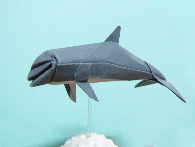 delfin papel
