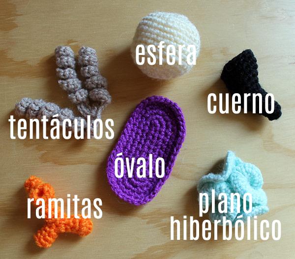 esfera, cuerno, plano hiperbólico, óvalo, ramitas y tentáculos a crochet